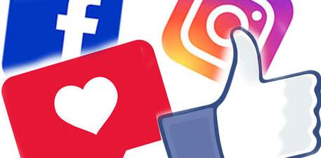 MOSER Animalline sur les réseaux sociaux